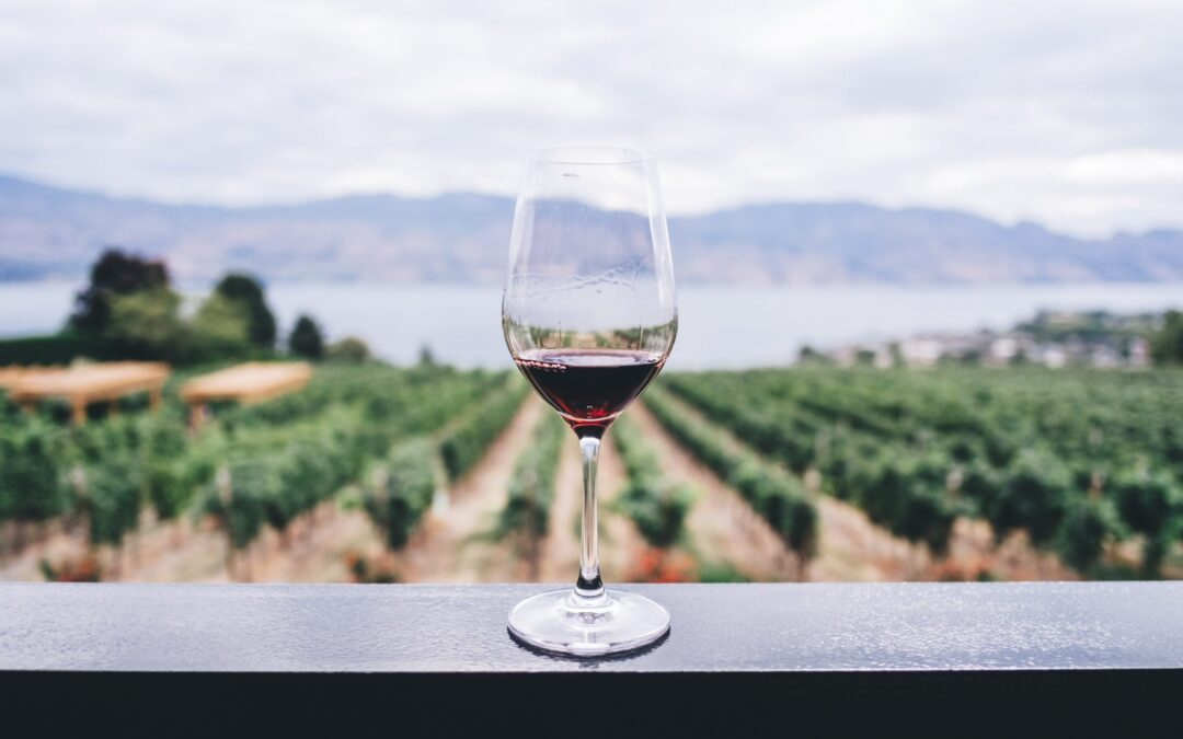 vinos.wine ve incrementadas las búsquedas en su web en un 71% durante el confinamiento